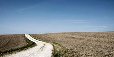 Lidera tu liderazgo: desarrolla tus competencias directivas | IESE Business School